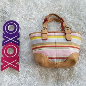 COACH Hampton soho daisy stripe canvas leather bag
